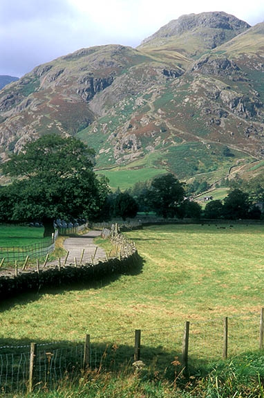 ENG: The Northwest Region, Cumbria, Lake District National Park, Central Lakes Area, Great Langdale, A narrow lane, flanked by dry laid stone walls, heads towards the cliff-sided peaks of Langdale Pikes [Ask for #262.434.]