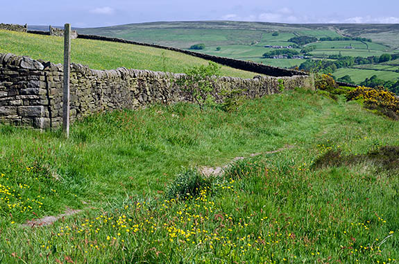 ENG: Yorkshire & Humberside Region, West Yorkshire, Calderdale Borough, Hebden Bridge, Haworth Moors, Footpath leads to the open moors [Ask for #270.404.]
